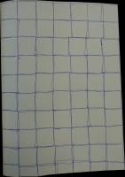 Ballpoint on paper, 2012